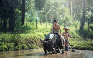 Cambodja_Header_Landeninformatie_reiseditie