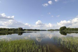 Estland Klimaat Weer Reiseditie Landeninfo 300x200 - Estland_Klimaat_Weer_Reiseditie_Landeninfo