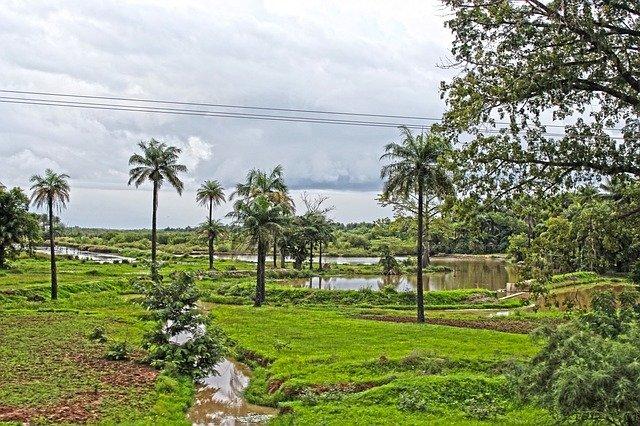 Afrika_Overzicht_Gamia_Klimaat_Weer_Reiseditie_Landeninfo