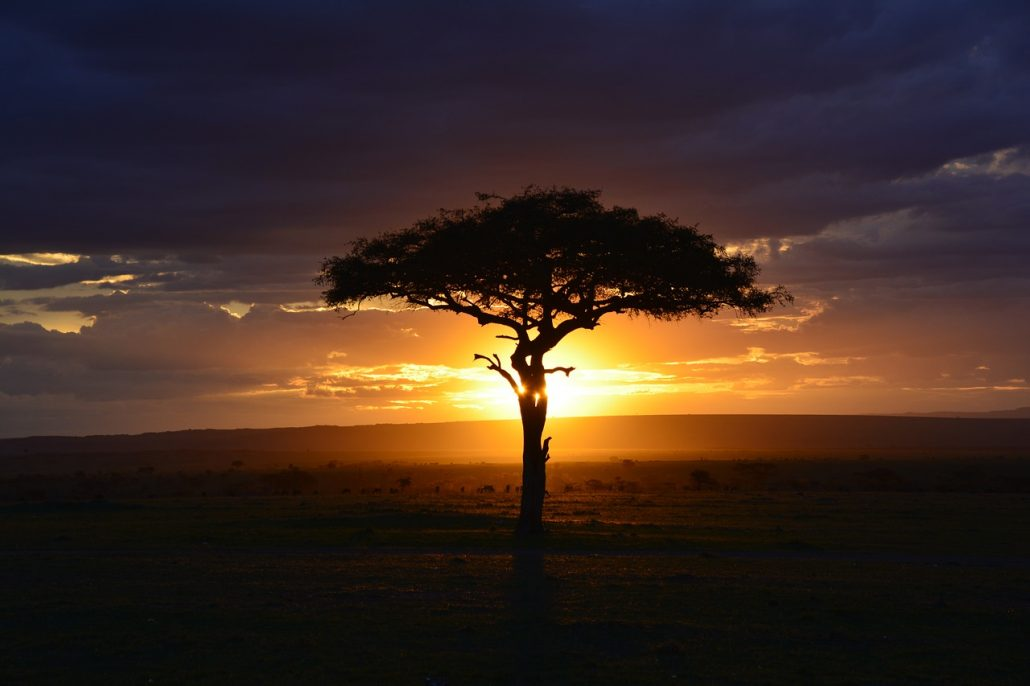 Kenia_Header_Uitzicht_reiseditie_Landeninformatie